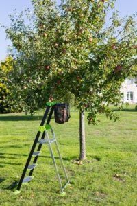 hliníkový rebrík do záhrady