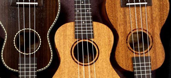 ako vybrať ukulele