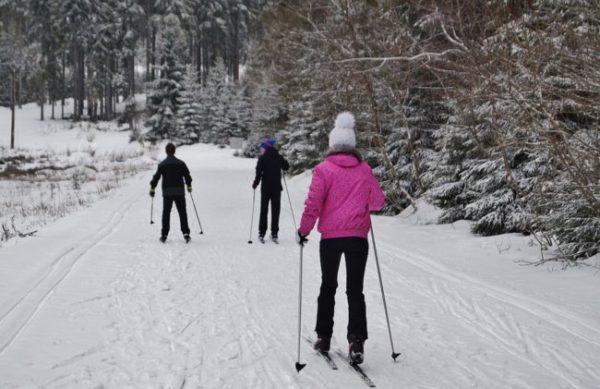 ako vybrať bežecké lyže