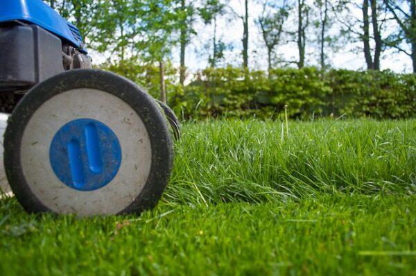kosenie a hnojenie trávnika