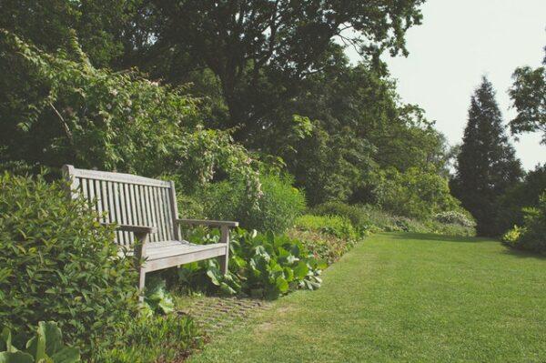 upravená záhrada